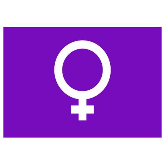 Bandera de Feminista de Poliéster Microperforada Reforzada