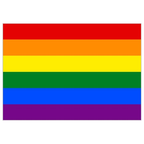 Bandera de LGTBI de 90 x 150 Centímetros de Poliéster para Interior
