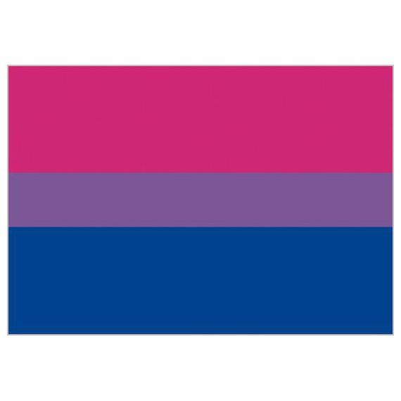 Bandera de Bisexualidad de 90 x 150 Centímetros de Poliéster para Interior