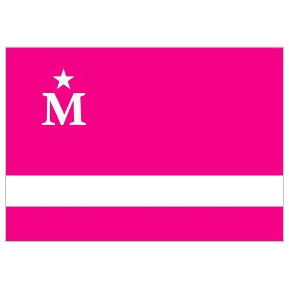Bandera de Moderdonia de 90 x 150 Centímetros de Poliéster para Interior