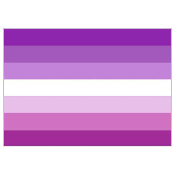Bandera de Lésbica Sun de 90 x 150 Centímetros de Poliéster para Interior