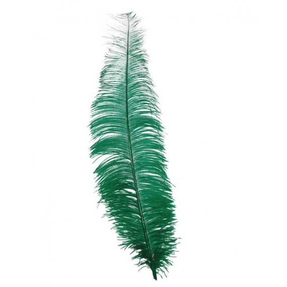 Pluma de Avestruz de 40 Centímetros de color Verde