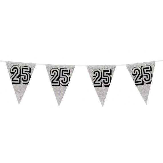 Banderines Holográficos Número 25 de color Plata de 8 Metros