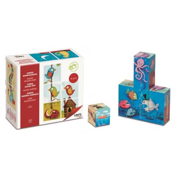 Pack de 9 Cubos Rompecabezas de Madera