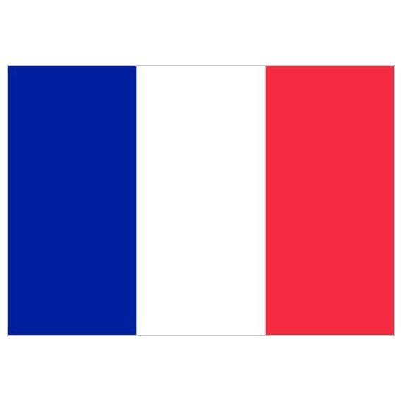 'Bandera de Francia de Poliéster Microperforada Reforzada
