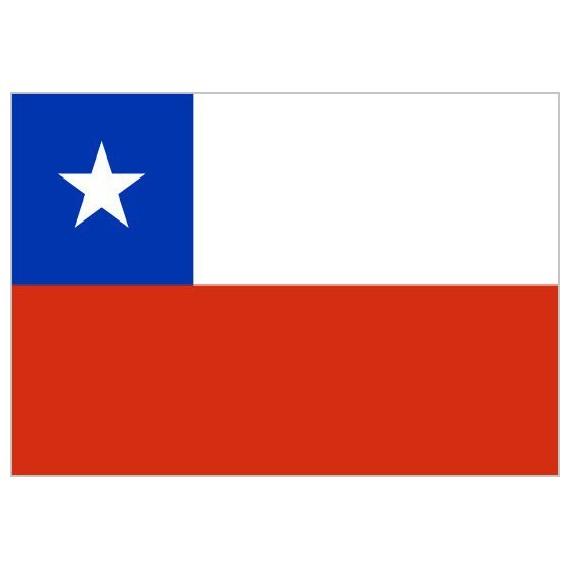 Bandera de Chile de Poliéster Microperforada Reforzada