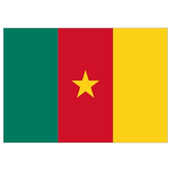 Bandera de Camerún de Poliéster Microperforada Reforzada
