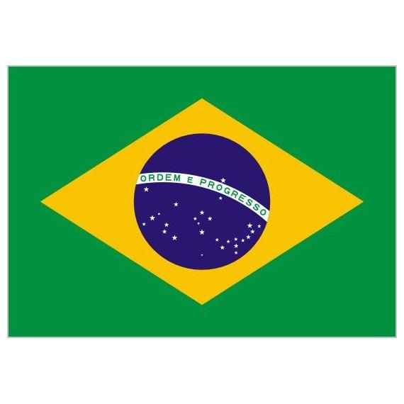 Bandera de Brasil de Poliéster Microperforada Reforzada