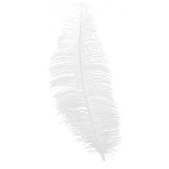 Pluma de Avestruz de 30 Centímetros de color Blanco