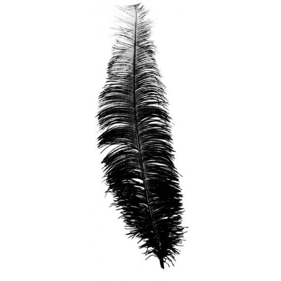 Pluma de Avestruz de 40 Centímetros de color Negro